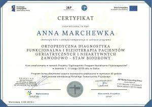 dyplom staw biodrowy
