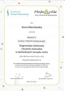 dyplom Terapia mnaualna moduł V